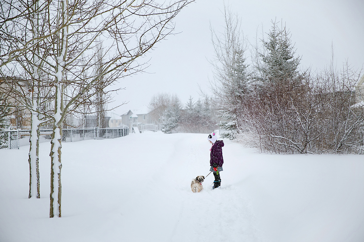 Girl walking her dog in the winter