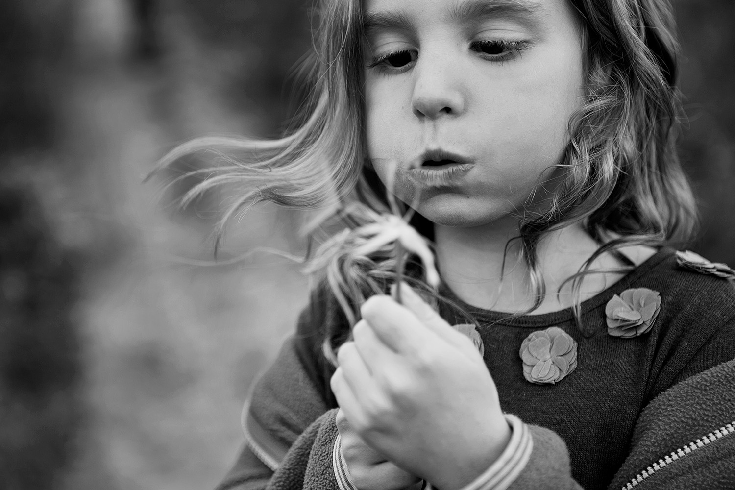Girl making a wish on a dandelion photographed by Dana Pugh