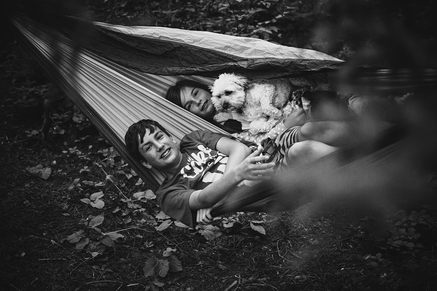 Siblings in a hammock